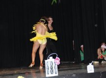 140430-gala-yolanda-cano-junta-local-aecc-211
