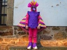 150213-carnavales-los-corrales-020