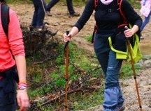 160325-trail-tejas-dobra-intermedia-tejas-081
