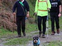 160325-trail-tejas-dobra-sopenilla-pista-104