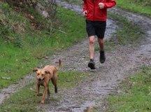 160325-trail-tejas-dobra-sopenilla-pista-122