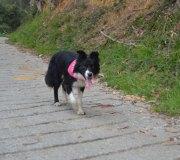 170414-trail-tejas-dobra-1de3-0078