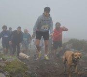 170414-trail-tejas-dobra-1de3-0194