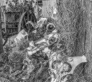 170901-guerras-cantabras-javier-ruiz-107