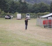 170910-carrera-caballos-molledo-004