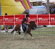 170910-carrera-caballos-molledo-010