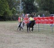 170910-carrera-caballos-molledo-012