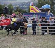 170910-carrera-caballos-molledo-014