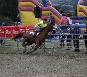 170910-carrera-caballos-molledo-034