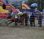 170910-carrera-caballos-molledo-035