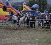 170910-carrera-caballos-molledo-039