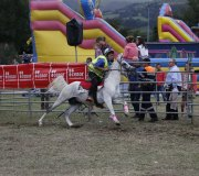 170910-carrera-caballos-molledo-042