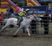 170910-carrera-caballos-molledo-044