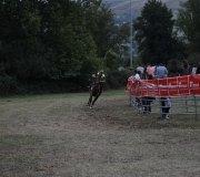 170910-carrera-caballos-molledo-051