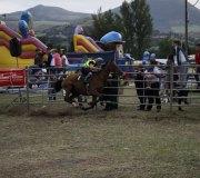 170910-carrera-caballos-molledo-053