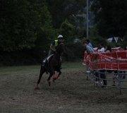 170910-carrera-caballos-molledo-057