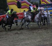 170910-carrera-caballos-molledo-065