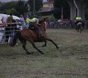 170910-carrera-caballos-molledo-072