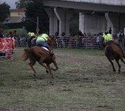 170910-carrera-caballos-molledo-073