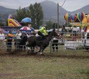 170910-carrera-caballos-molledo-089