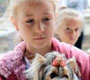 170910-exposicion-canina-san-felices-020