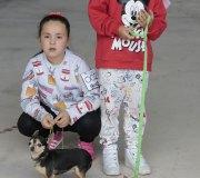 170910-exposicion-canina-san-felices-039