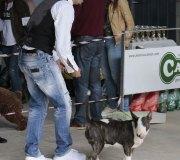 170910-exposicion-canina-san-felices-071