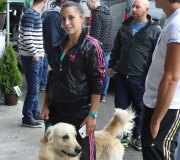 170910-exposicion-canina-san-felices-114