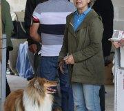 170910-exposicion-canina-san-felices-116